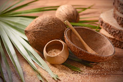Coconut palm sugar Royalty Free Stock Photo