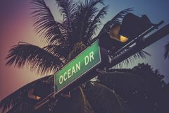 Coconut palm tree against Ocean Drive sign in Miami Beach. Florida. Retro style colors Royalty Free Stock Photo