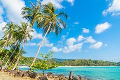 Coconut palm tree on the beach and sea. Beautiful island paradise with coconut palm tree around sea and beach on white cloud and blue sky - Holiday vacation Royalty Free Stock Photo