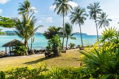 Coconut palm tree on the beach and sea. Beautiful island paradise with coconut palm tree around sea and beach on white cloud and blue sky - Holiday vacation Royalty Free Stock Photos