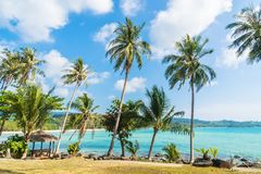 Coconut palm tree on the beach and sea. Beautiful island paradise with coconut palm tree around sea and beach on white cloud and blue sky - Holiday vacation Royalty Free Stock Photography