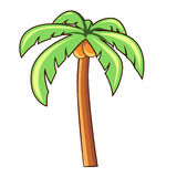 Coconut palm tree isolated illustration Royalty Free Stock Photo
