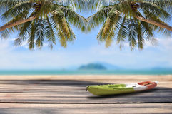 Coconut palm tree and kayak boat with plank on tropical beach background Royalty Free Stock Image