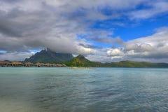 Coconut Palm Tree Moorea Beach French Polynesia Royalty Free Stock Photography