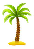 Coconut palm tree on sand island Stock Photos