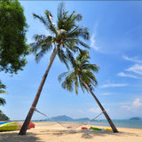 Coconut palm trees with hammock and tropical beach background. Happy summer holiday concept Royalty Free Stock Photo