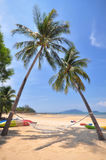 Coconut palm trees with hammock and tropical beach background. At Phayam island in Ranong province, Thailand. Happy summer holiday concept Royalty Free Stock Photography