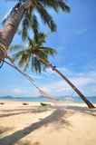 Coconut palm trees with hammock and tropical beach background. At Phayam island in Ranong province, Thailand. Happy summer holiday concept Stock Photos