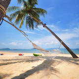 Coconut palm trees with hammock on tropical beach at Phayam island in Ranong province, Thailand. Coconut palm trees with hammock on tropical beach background at Royalty Free Stock Photo