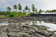 Coconut palm trees on mixed sand and lava beach, Puuhonua O Honaunau Place of Refuge National Park, Hawaii Stock Photography