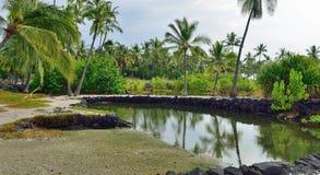 Coconut palm trees on mixed sand and lava beach, Puuhonua O Honaunau Place of Refuge National Park, Hawaii Royalty Free Stock Photos