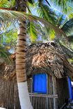 Coconut palm trees palapa hut beach Stock Images