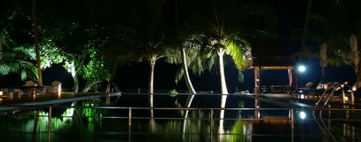 Coconut palm trees reflecting in the water pool Royalty Free Stock Images