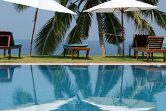 Coconut palm trees reflecting in the water pool Stock Photo