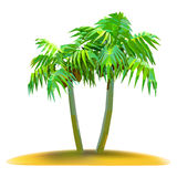 Coconut palm trees on small island Royalty Free Stock Image