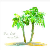 Coconut palm trees on small island Royalty Free Stock Photo
