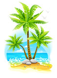Coconut palm trees at tropical island in Stock Photo