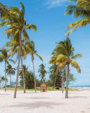 Coconut Palm trees on white sandy tropical beach. Summer holiday Royalty Free Stock Photography