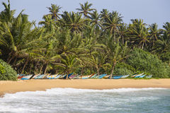 Coconut palm trees and wooden boats on the sand beach Royalty Free Stock Photography