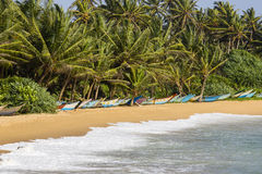 Coconut palm trees and wooden boats on the sand beach Royalty Free Stock Images