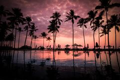 Coconut Palm Tress Beside Calm Lake Silhouette Royalty Free Stock Photos