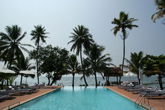 Coconut palms around the pool on the beach Stock Photos