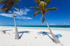 Coconut palms at beach Royalty Free Stock Photos