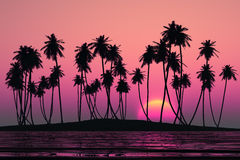 Coconut palms island Stock Photo