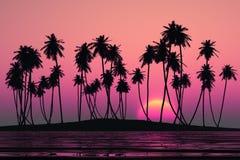 Coconut palms island Stock Photo