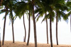Coconut palms and old red pleasure boat are on white sandy beach. Fishing boats on a beach with palm trees stock images