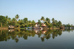 Coconut palms on the shore of the lake. Kerala, South India Royalty Free Stock Image