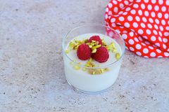 Coconut Panna cotta. Coconut milk panna cotta with raspberry and pistachio Stock Images