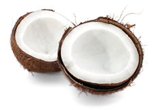Coconut parts on white background Stock Image
