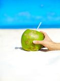 Coconut with person hand on white beach sand. Near ocean on sunny summer day Royalty Free Stock Photo