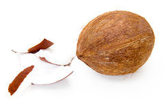 Coconut with pieces Stock Image