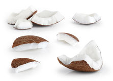 Coconut pieces isolated on a white background. Stock Image
