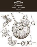 Coconut Pina Colada. Vector sketch illustration. Of cocktails. Hand drawn Royalty Free Stock Images