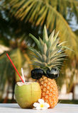 Coconut and pineapple Royalty Free Stock Photos