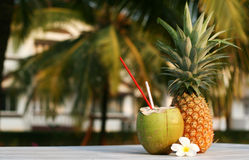 Coconut and pineapple royalty free stock photo