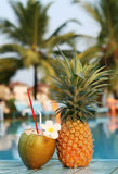 Coconut and pineapple Royalty Free Stock Images