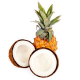 Coconut and pineapple isolated Stock Image