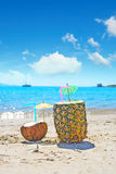 Coconut and pineapple by the shore Royalty Free Stock Photo