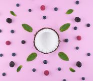 Coconut on pink background with berries. Royalty Free Stock Photo