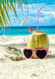 Coconut, pink sunglasses and seashell on sand close-up. Coconut, pink sunglasses and seashell on sand closeup. Maldives Royalty Free Stock Photo