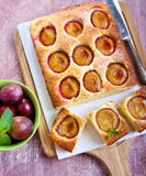 Coconut and plum cake Stock Photography