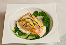 Coconut poached salmon and baby bok chou with roasted leeks - paleo diet. Coconut poached salmon and baby bok choy with roasted leeks in a deep square, round stock image