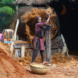 Coconut processing. Young girl making rope out of coconut in Bangladesh Royalty Free Stock Images