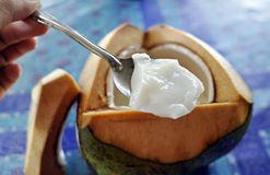 Coconut pudding. Tasty coconut pudding, best to be eaten during summer time royalty free stock images
