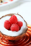 Coconut and raspberries Royalty Free Stock Image