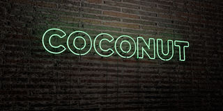 COCONUT -Realistic Neon Sign on Brick Wall background - 3D rendered royalty free stock image Stock Images